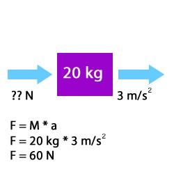 Force Calculator F = ma